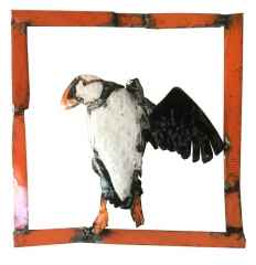 ' Kutup Papağanı ', 50x50x5 cm, Hurda Metal, Kaynak