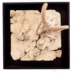 Untitled - İsimsiz, 20x20x15 cm, White Clay, Beyaz Kil-1250°C Handshaping, Serbest Elle ve Kalıpla Şekillendirme, 2017