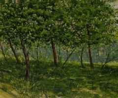 24x29 cm -  TÜYB - 2011- mayıs ışığı
