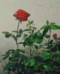 'Kırmızı'<br />80x65 cm - TÜYB - 2014