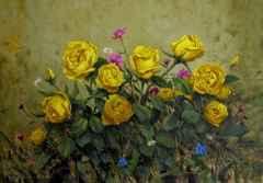 Sarı Güller, 50x70 cm, TÜYB, 2017