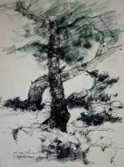 29x21 cm, Kağıt Üzeri Suluboya