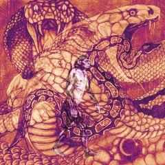 Can Pekin - 'Snake' 25x25 cm, TÜKT, 2017