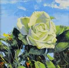 Fatih Karakaş - 'Beyaz Gül / White rose', 25x25 cm, Tüyb, 2016