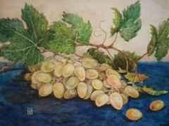 'Grapes 27x34 cm, watercolour, 2014